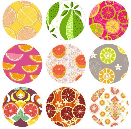 Citrus_Blog