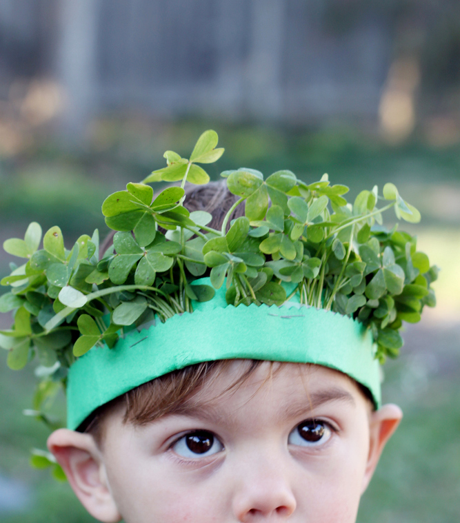 Clover crown