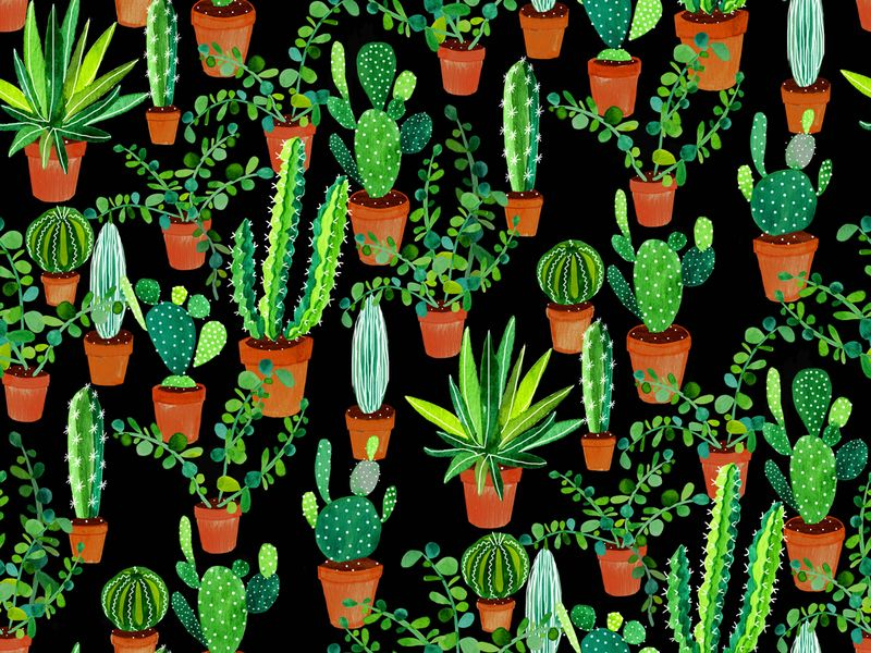 Succulent fabric patterns spoonflower blog design for Patterned material for sale