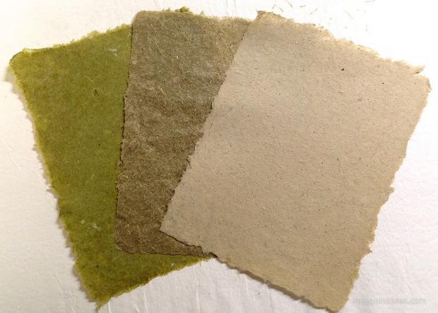 Invasive weed paper